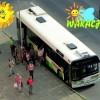 Letni rozkład jazdy autobusów MZK Piła