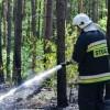 Pożar lasu w okolicach Piły