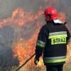 Płonęły lasy