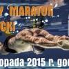 Już w sobotę II Andrzejkowy Nocny Maraton Pływacki