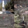Drzewostan na cmentarzu wojennym znajdzie się pod opieką Powiatu Pilskiego
