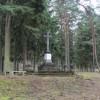 Porządkowanie drzewostanu na cmentarzu jenieckim w Leszkowie