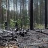 Pożar lasu koło Starej Łubianki