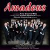 Orkiestra Amdeus wystąpi w pilskim RCK. Już dziś zapraszamy!