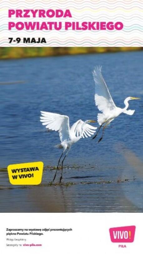 """Wystawa """"Przyroda powiatu pilskiego. Poznaję, szanuję, chronię"""" w VIVO! Piła"""