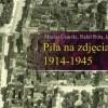 """Rusza projekt """"Piła na zdjęciach lotniczych 1914-1945"""""""