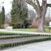 W Parku Miejskim pojawiły się Dendrobajki Pilskie