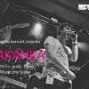 Zapraszamy na koncert zespołu SKAKANKA