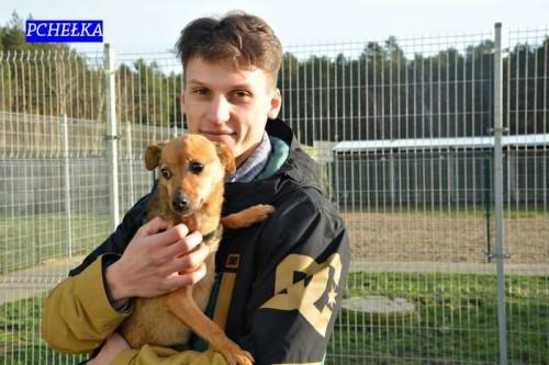 adoptujac_psa12