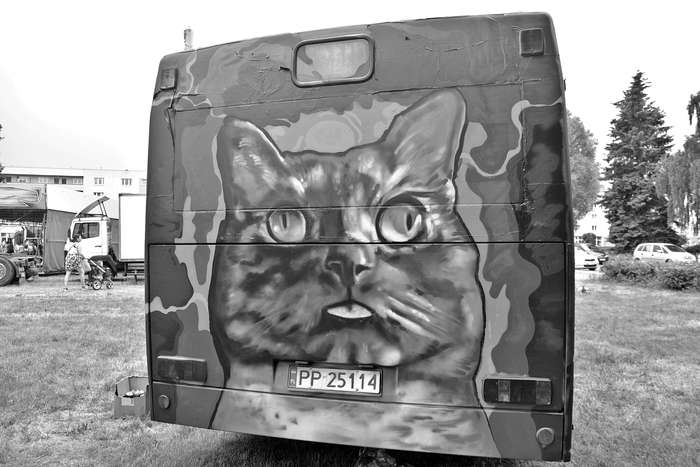 autobusy_niczym_dziela63