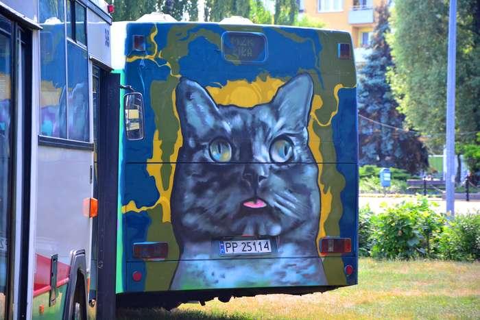 autobusy_niczym_dziela84