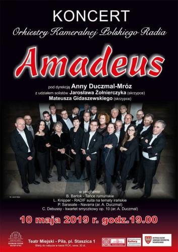 orkiestra_amadeus