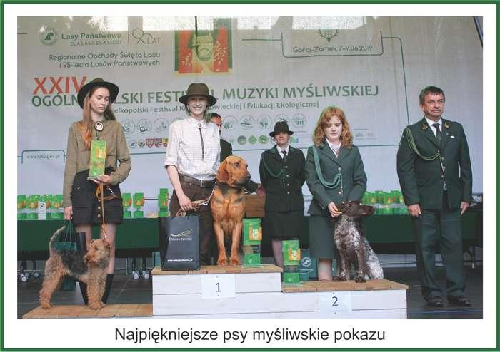 festiwal_muzyki_mysliwskiej1_14