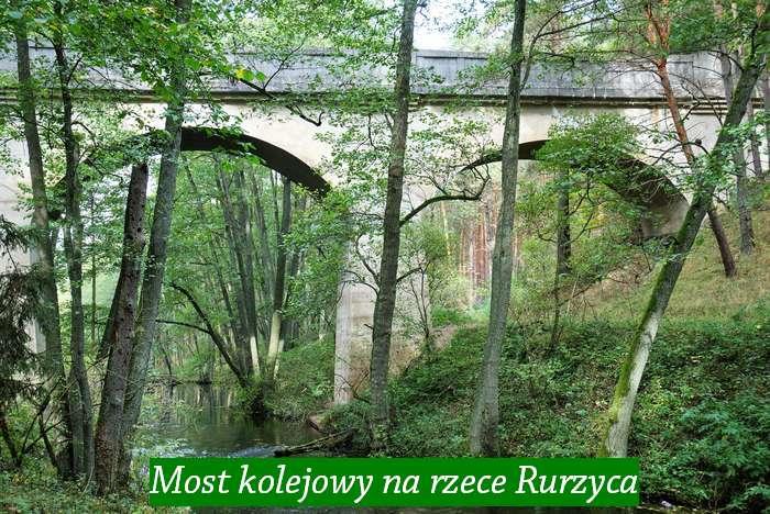jak_wypoczywac_w_lesie1_07